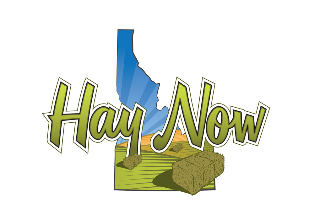 Creative Logo Design for Hay Now, Twin Falls Idaho